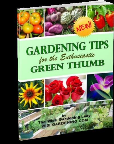 GardeningTips_thinpaperback
